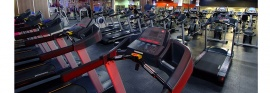 Muscle & Fitness Pinetown, Pinetown